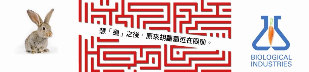 שנת הארנב - ברכות שנה טובה לראש השנה הסיני